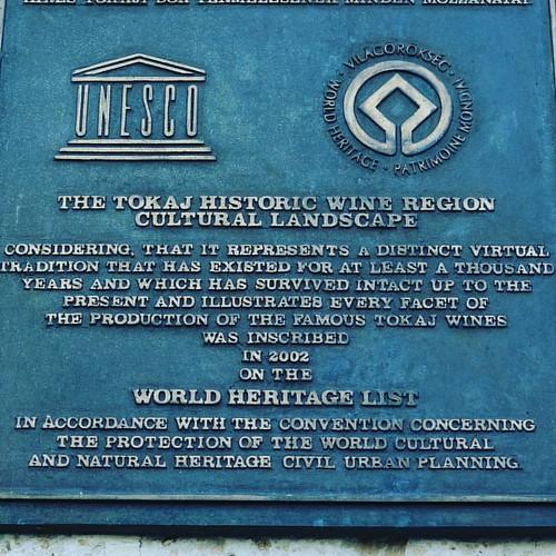 Регион Токай находится под защитой UNESCO  Легендарный Токай  Венгрия  Токай   #ЖизньКакБольшоеПутешествие  #венгрия  #токай  #unesco