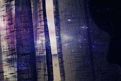 El tiempo no es sino el espacio entre nuestros recuerdos [27/365] (MiriamGM) Tags: madrid espaa cortina girl spain nikon remember chica no el days nuestros teenager entre 365 es proyect dias henri recuerdos alcobendas amiel espacio tiempo nebulosa proyecto sino frederic 2011 d40 365days 365dias miriamgm