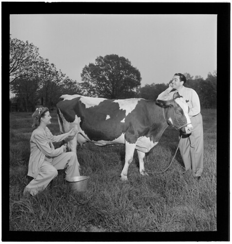 [Portrait of Enric Madriguera and Patricia Gilmore on their farm, Connecticut, ca. June 1947] (LOC)