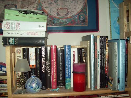 Bookshelves 13