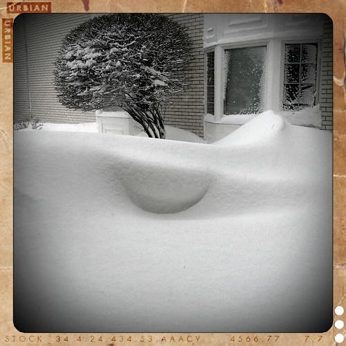 3 1/2 ft snowdrift by front doors