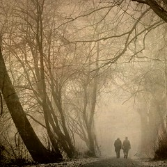 FADING INTO THE MIST. (Edward Dullard Photography. Kilkenny, Ireland.) Tags: wood trees mist painterly tree texture leaves fog sepia forest landscape atmosphere magical photoart enchanted cillchainnigh naturepoetry thesecretlifeoftrees edwarddullardphotographykilkennyireland
