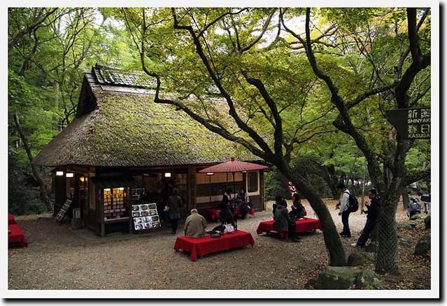 101113_143144_奈良公園_水谷茶屋
