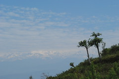 The beautiful daily views in Bandipur, Nepal (amazing_tina) Tags: pink nepal sunset mountains tree beautiful clouds countryside amazing scenery branches hill dream scenic floating fresh strong greenery awe twigs himilayas bandipur himilayanmountains