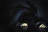 6/52 - Ansiedad (Lunayda) Tags: shadow dark sadness fantastic hands arms fear depression scared stress anxiety ansiedad