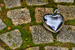 A Discarded Heart Forlornly Hoping to Be Rescued on St Valentines Day (Magdalen Green Photography) Tags: love pretty dof heart f14 scottish valentine cobbles hdr valentinesday brokenhearted dundeescotland iangordon adiscardedheartforlornlyhopingtoberescuedonstvalentine adiscardedheartforlornlyhopingtoberescuedonstvalentinesday