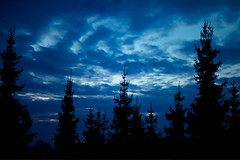 Evening Sky.