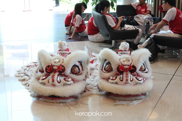 The Lion Head of the Lion Dance