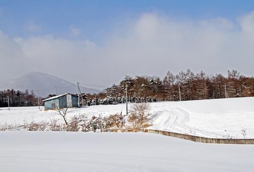 Camino Kazawa1