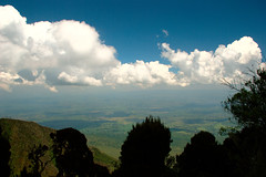 View towards the Kigezi (flschen) Tags: africa berg day cloudy pflanze himmel afrika uganda grn blau 32 baum vegatation virunga kigezi mtsabinyo mgahingagorillanationalpark regionwide