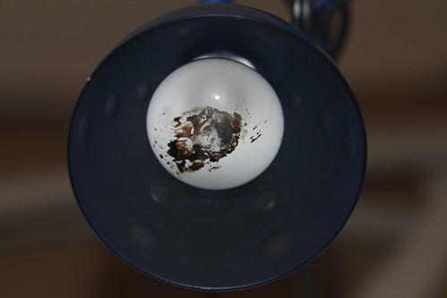 lightbulb after the fire