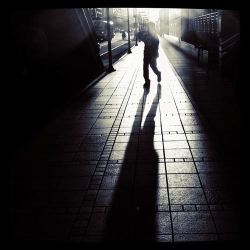 影子是靈長類進化的痕跡,只有在晴天才被看見。