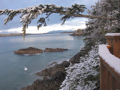 snowy morning at middle beach (lorneinvan) Tags: winter sunset snow canada bc pacific vancouverisland tofino cascadia mackenziebeach middlebeachlodge