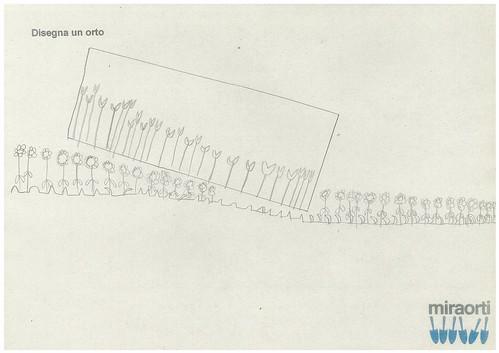 Disegna un orto 5B 19