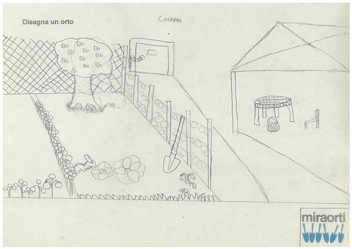 Disegna un orto 5B 3