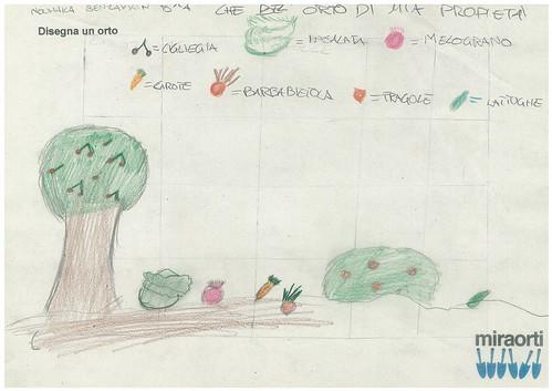 Disegna un orto 5A 9
