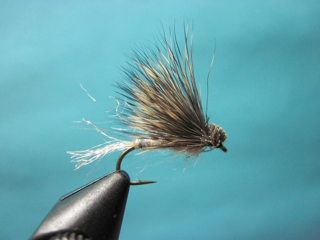 Ice Dub Caddis