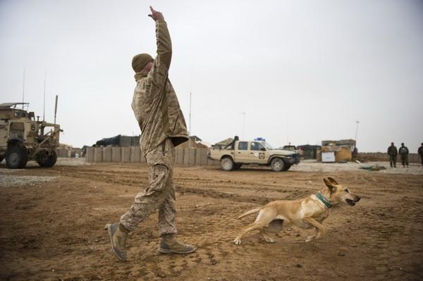 AFP-Kostyukov-Afghanistan_456