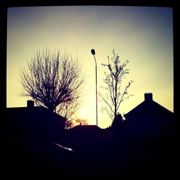 Sunny Friday