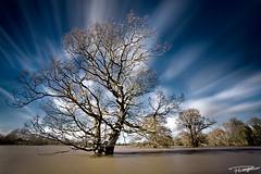 Atcham Floods (Paul-Whittingham) Tags: uk england river shropshire severn shrewsbury floods atcham dapagroupmeritaward dapagroupmeritaward3 dapagroupmeritaward4 dapagroupmeritaward2