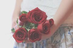 70/365 flowers everywhere (Honey Pie!) Tags: flowers roses flores skirt days honey romantic 365 rosas saia 365days romntica 365daysproject 365dias 365daysofhoney