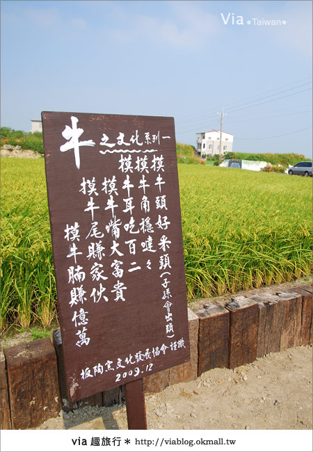 【嘉義景點】新港板頭村交趾剪粘藝術村~到處都是有趣的拍照景點!4