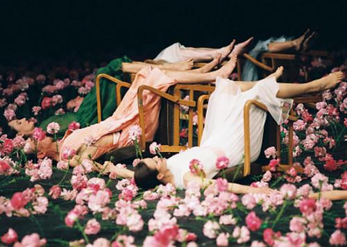 pina bausch 劇團劇目《康乃馨》carnations live in hk