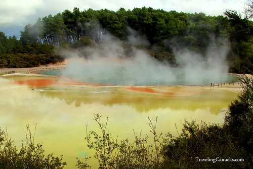Thermal Pools in Rotorua, New Zealand