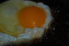 17/03/2011 La cena (hlanchas) Tags: food comida egg frito aceite oil fried huevo yolk yema 1fotoxdia
