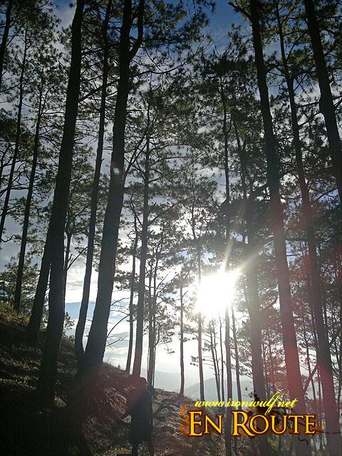 Running towards the Sun