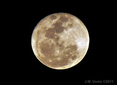 Super Moon- The Day After (uvaisjm - Al Seylani Photography) Tags: sky nature closeup night nightshot zoom fullmoon riyadh saudiarabia lunar waning skywatching supermoon