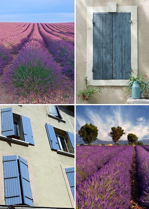 provenceshutters2.jpg