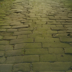 Well worn cobbles (Casatigeo) Tags: statelyhome englandcountryside wortleyhall syorkshire