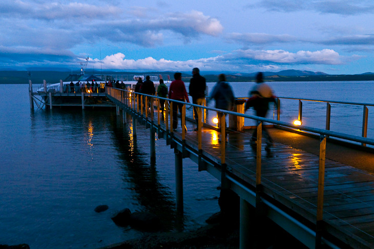 glowworm tour in new zealand with real journeys