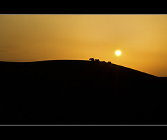 Emerging from Mother Earth's Womb! (PNike (Prashanth Naik..back after ages)) Tags: sunset sunlight india nikon jaisalmer rajasthan jaysalmer pnike