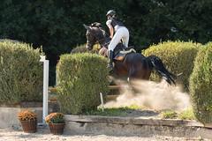 DSC02220_s (AndiP66) Tags: aespli derby hindelbank springen 2016 pferd horse schweiz switzerland kantonbern cantonberne concours wettbewerb horsejumping springreiten pferdespringen equestrian sports pferdesport sport sony sonyalpha 77markii 77ii 77m2 a77ii alpha ilca77m2 slta77ii sony70400mm f456 sony70400mmf456gssmii sal70400g2 andreaspeters bern ch september