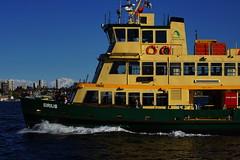 Ferry Sirius (Blue Mtns. bush girl off on Holidays!) Tags: sydney harbour ferry sirius
