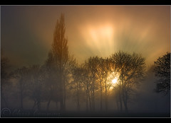 Epic..........................part 2. (Digital Diary........) Tags: trees sunset mist fog amazing victoriapark glow victoria sunrays epic sthelens oneoff merseyside burnoff chrisconway reys epiclight