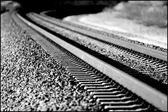 Concrete Ties On Cajon (greenthumb_38) Tags: railroad blackandwhite bw train blackwhite rail rails duotone locomotive cajon 582 cajonpass concreteties canon40d railclips jeffreybass cajona