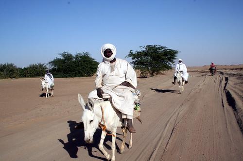 IMG_1232-Sudan