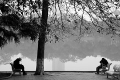 . (ngravity) Tags: street people bw woman lake man reflection tree water canon bench streetphotography vietnam hanoi benches streetphotographer eos50d makrygiannakis