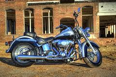 2003 Heritage Softail (Carolinadoug) Tags: heritage bike nc nikon belmont northcarolina harley harleydavidson motorcycle hd davidson softail hdr topaz photomatix tonemapped flstci d700 topazadjust