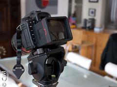 MagFinder_MonitorX_Canon7D-4.jpg