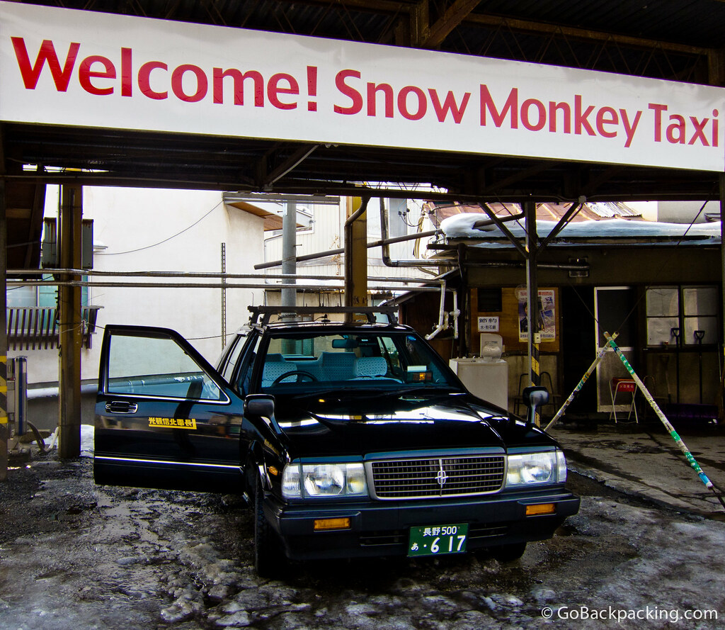 Snow monkey taxi in Nagano, Japan