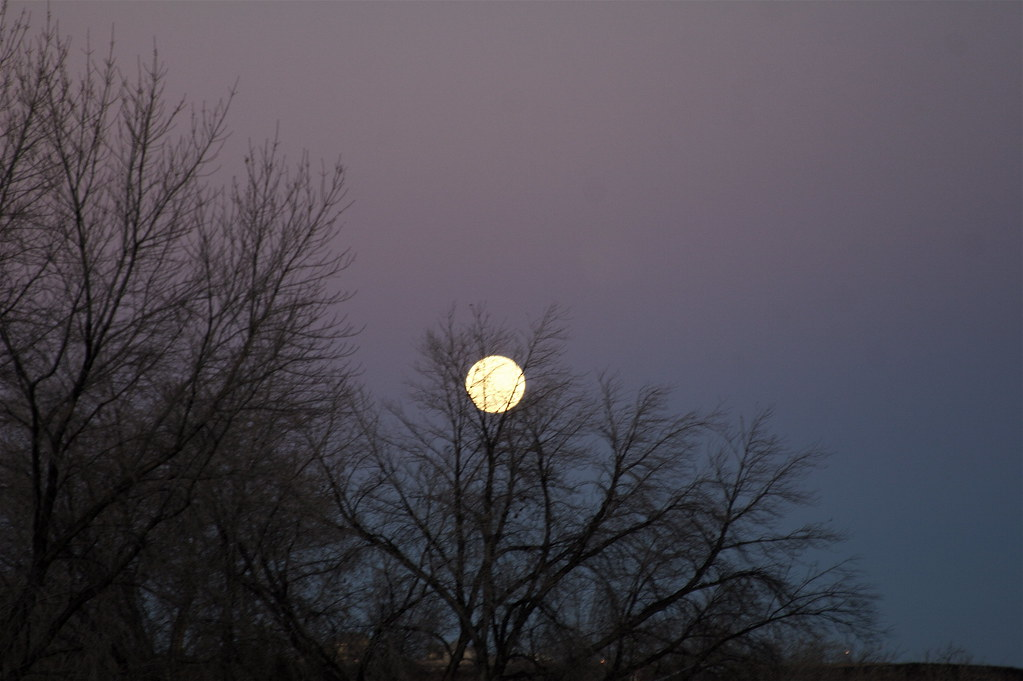 Moon Rising - 2