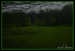 HIDDEN VIADUCT (vicki127.) Tags: trees green field grass canon300d branches border viaduct soe picnik wilmslow digitalcameraclub youmademyday flickraward ilovemypics february2011 mygearandme ringofexcellence vickiburrows vicki127