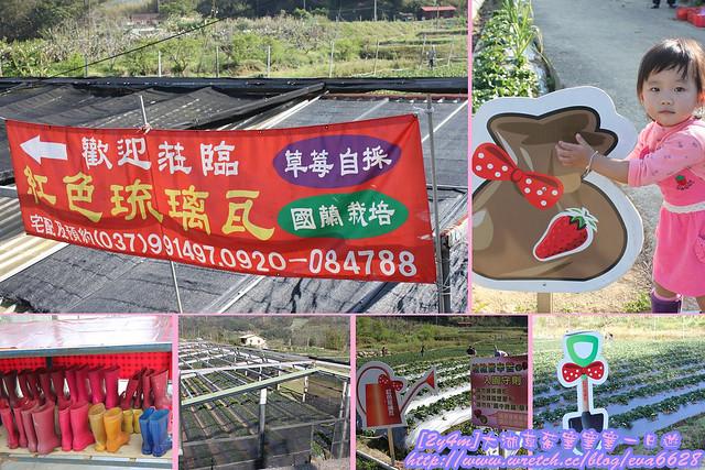 2011.02.27 大湖草莓塞塞塞一日遊-3
