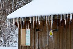 stritz-4070.jpg (jstritz) Tags: winter icicles fhsp