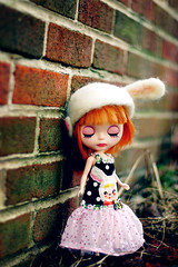 Sad, One-Eared Bunny - 64/365 ADAD 2011