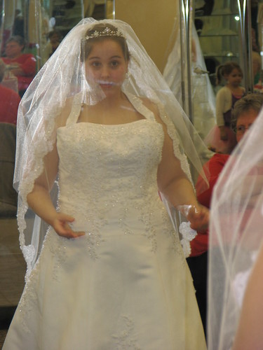 Ambers Wedding Dress - 2-13-11 067
